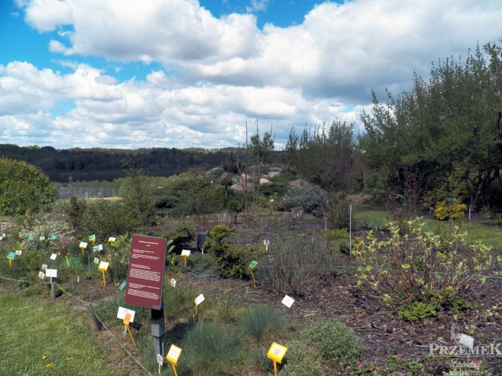 Gołubieński Ogród Botaniczny