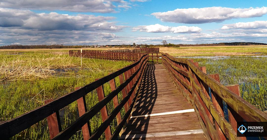 Narwiański Park Narodowy Kładka Waniewo - Śliwno