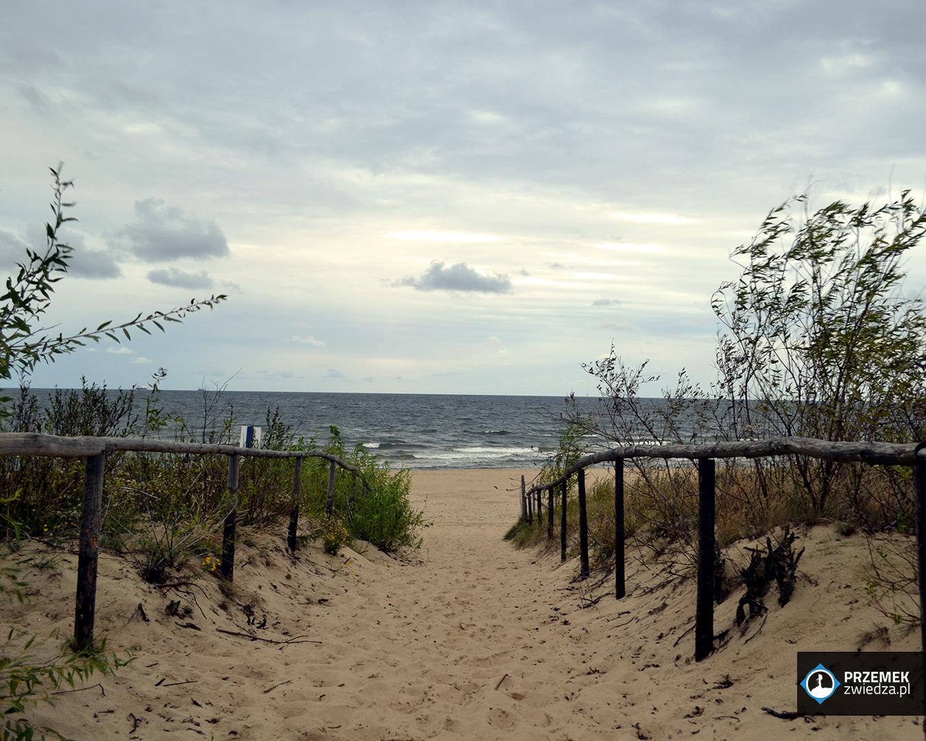 ptasi raj morze bałtyckie